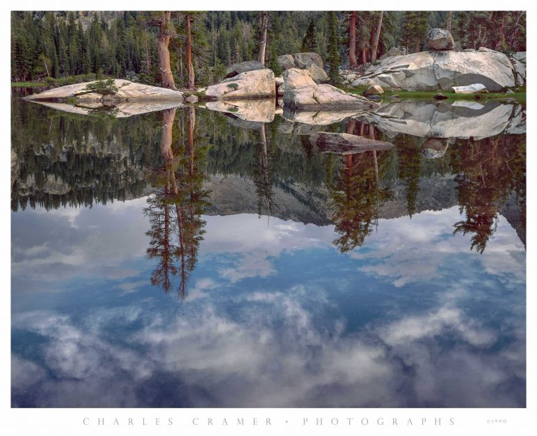 Detail, Ten Lakes Basin, Yosemite