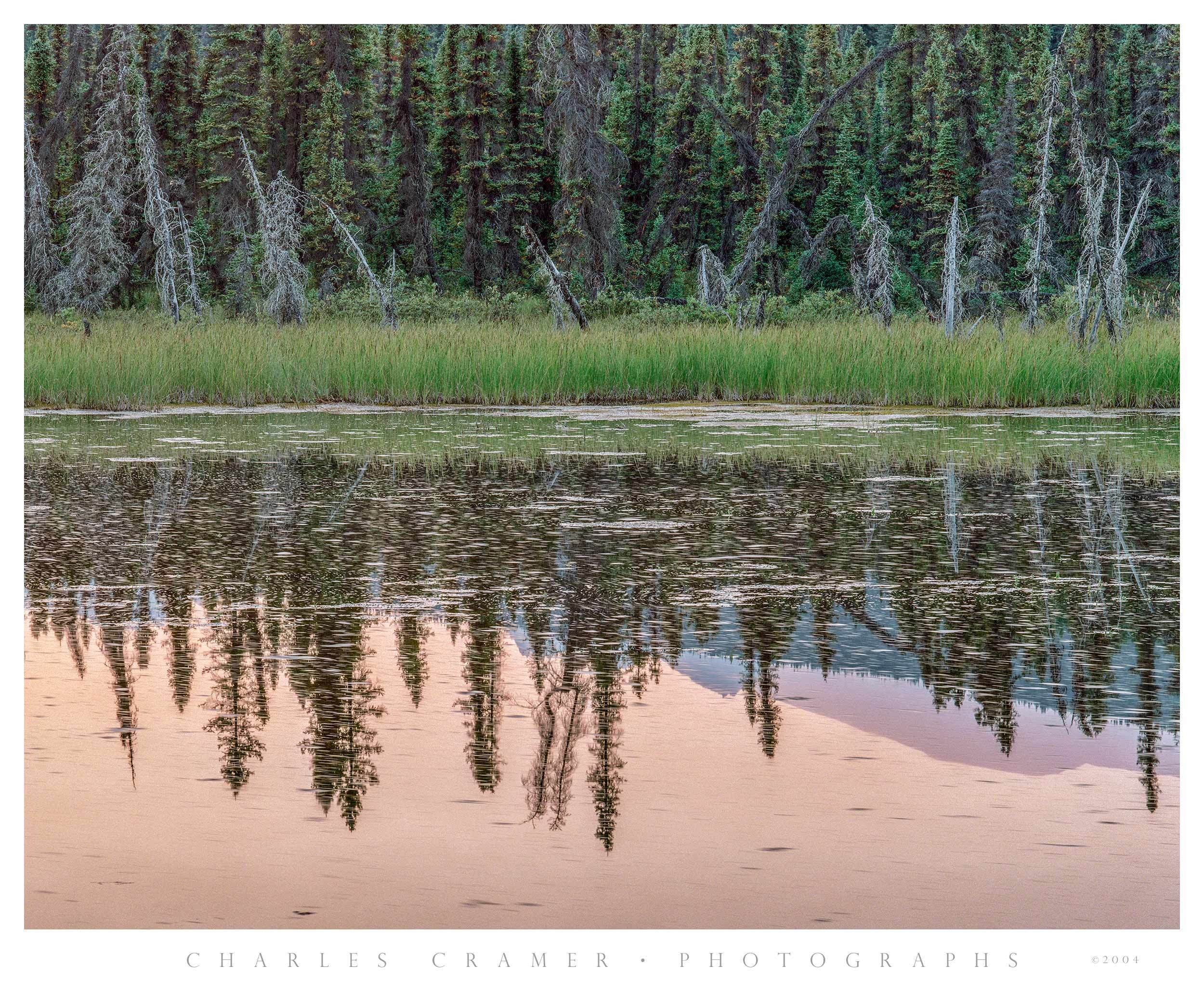 Evening, Small Pond, Chitina-McCarthy Road, Alaska