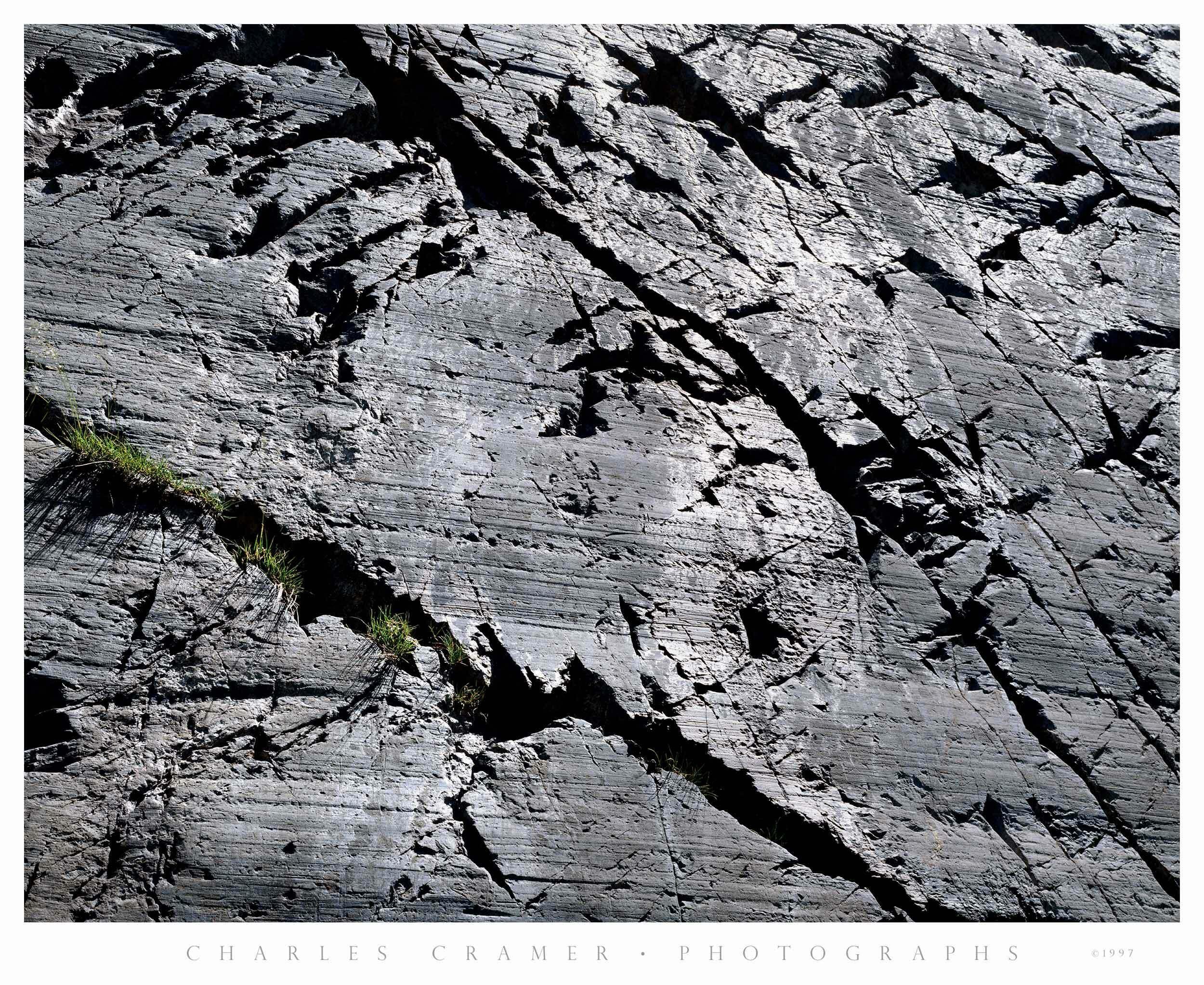 Granite Wall and Grasses,  Ediza Lake
