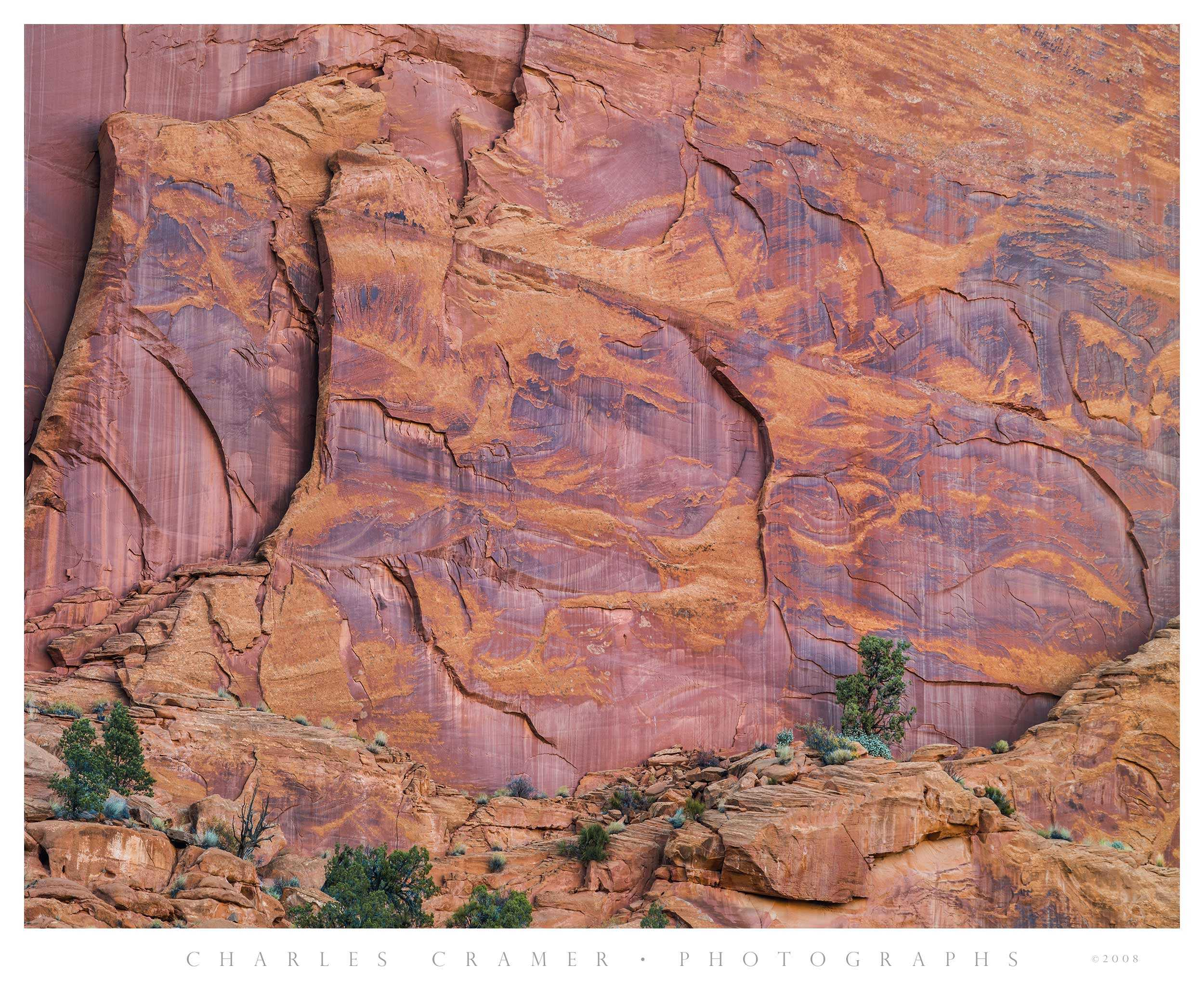 Sandstone and Junipers, Long Canyon, Utah