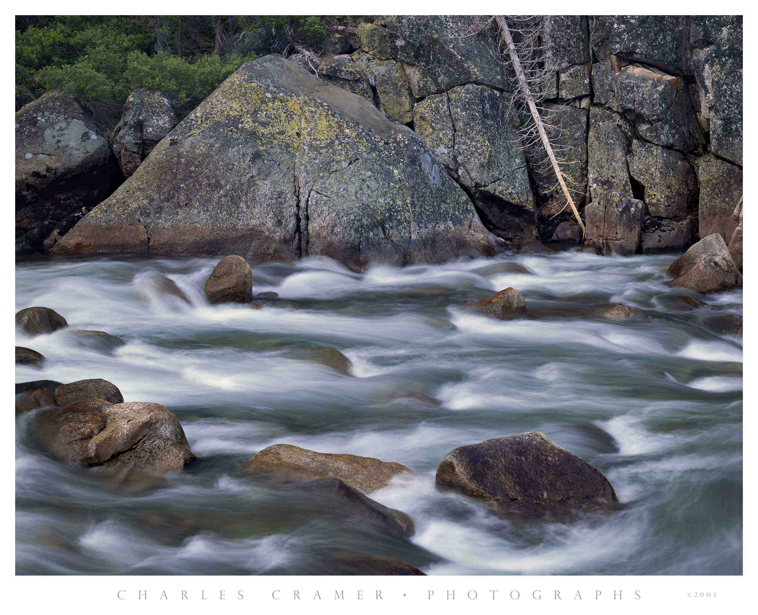 Tuolumne River, Fallen Tree, Yosemite